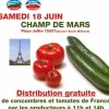 photo Distribution gratuite de concombres et tomates de France