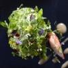 photo Foie gras végétal ou l'avocat autrement, cœur homard et jardin secret.