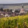 photo Appellation Chablis, le Chardonnay dans toute sa splendeur