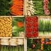 photo Astuces pour conserver vos fruits et légumes