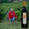 photo Vins de Bordeaux du Domaine Agape
