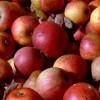 photo La pomme veut séduire les moins de 30 ans