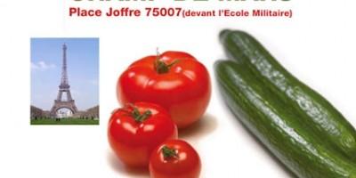 photo Distribution gratuite de concombres et tomates de France