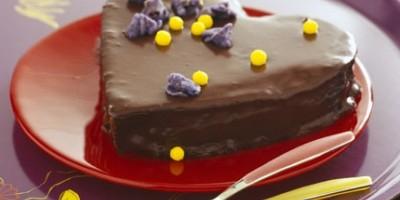 photo Gâteau tendre au chocolat