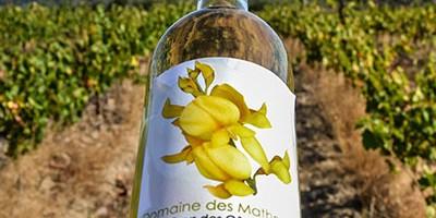 photo Domaine des Mathouans, des vins en Roussillon