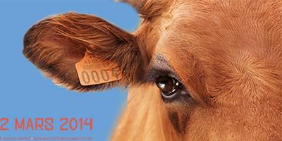 photo Salon de l'agriculture 2014 du 22 février au 2 mars