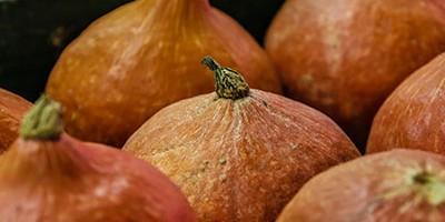 photo Le Potimarron, légume du pays de Soleil Levant