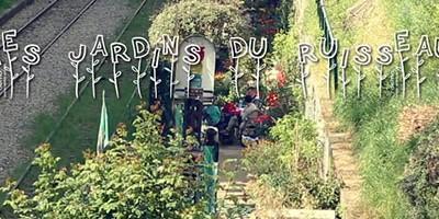 photo Tout savoir sur les Jardins Partagés