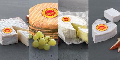 photo Accords Vins et Fromages de Normandie