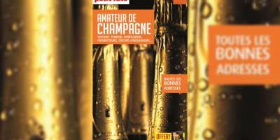 photo Guide de l'amateur de Champagne, Petit Futé
