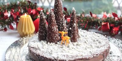 photo Moelleux de Noël à la Nocciolata par Marie-Laure Chassagnette