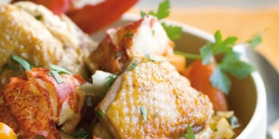photo Fricassée de poulet français au homard