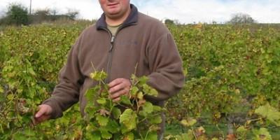 photo Le Petiot, un vin blanc pas si petit que ça !!!