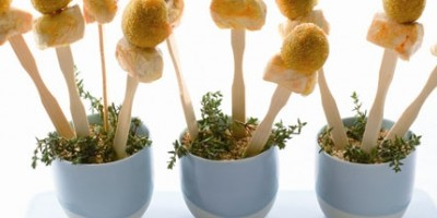 photo Mini brochettes de poulet et olives d'Espagne