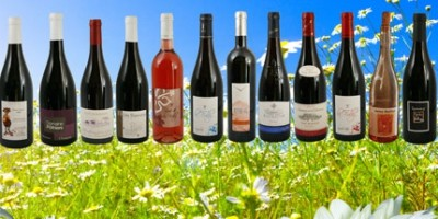 photo Accord vins de Gamay et charcuteries